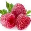 Frutos para uma saúde de ferro