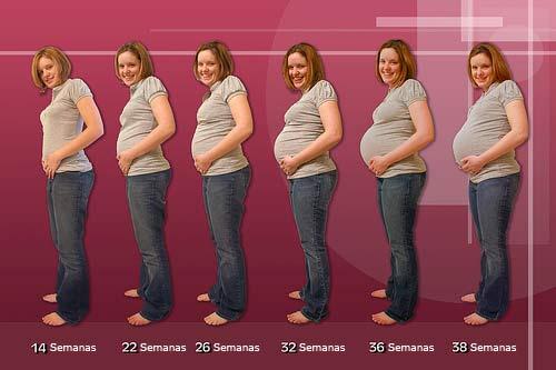 Corpo da Grávida. Mudanças durante a Gravidez